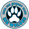 HK ICE WOLVES E8 logo